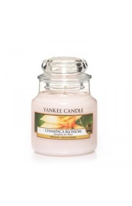 Yankee Champaca Blossom kis üveggyertya